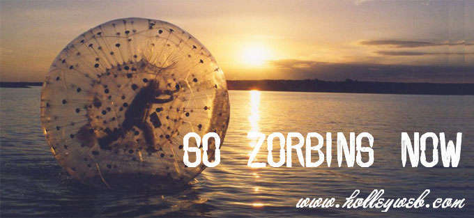 Zorb Ball On Sale At www.holleyweb.com