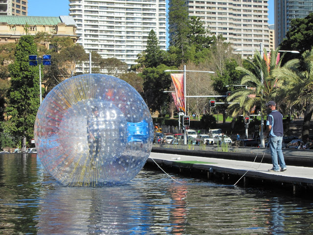 Clear human sized hamster ball