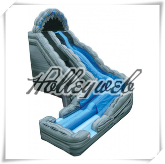 Summer Splash Wet or Dry Water inflatable Slide